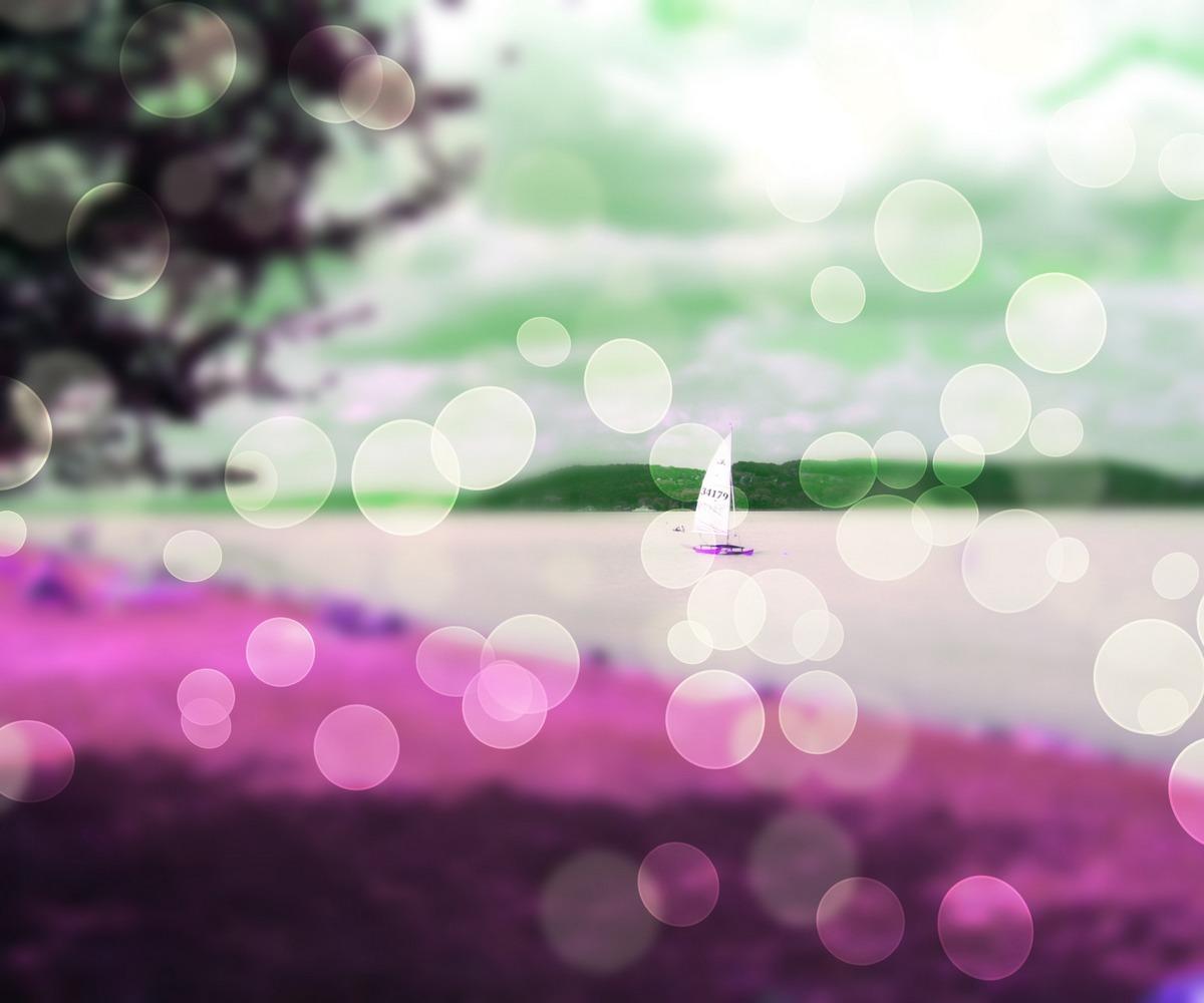 Pink Holiday Bokeh Background